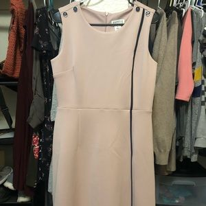 Pink with blue stripe dress